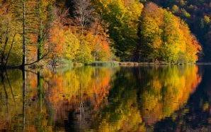 Her Autumn fantasy fairytale