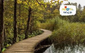 Top 3 reasons to spend autumn in Plitvice